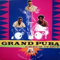 "Grand Puba - Check It Out 12"" Vinyl"